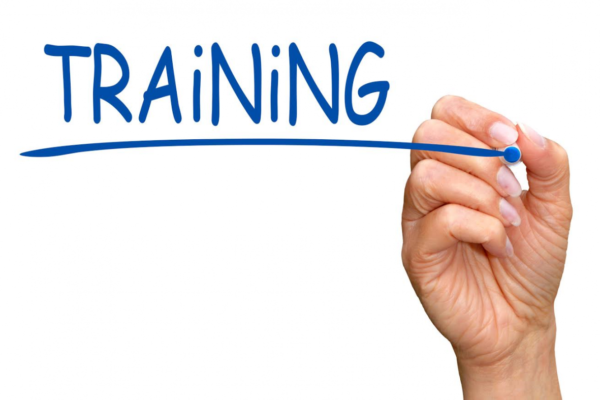 Call for Participants: Training Programme for CSOs in Turkey: Information Activism, Data Collection/Data Management (Deadline for Basic Training PROLONGED : Wednesday, 28 October 2020)